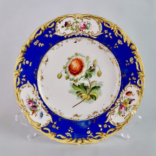 Coalport plate, painted ranunculus patt. 4/412 by Stephen Lawrence, 1840