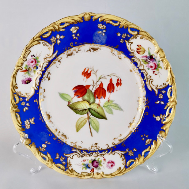 Coalport plate painted by Stephen Lawrance, fuchsia