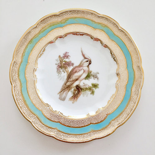Cabinet plate, white cockatoo by John Randall, Coalport 1881 A/F