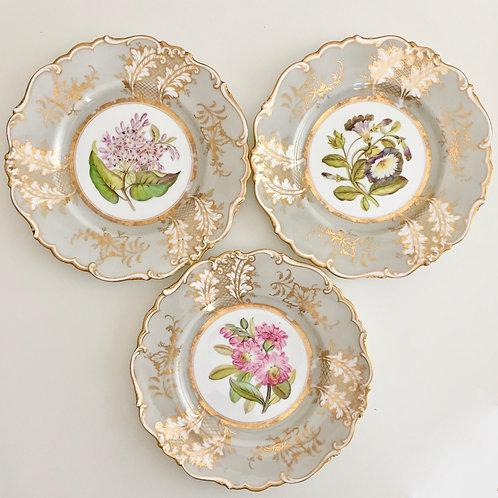 Set of 3 plates, sublime botanical studies, Ridgway 1830-1837