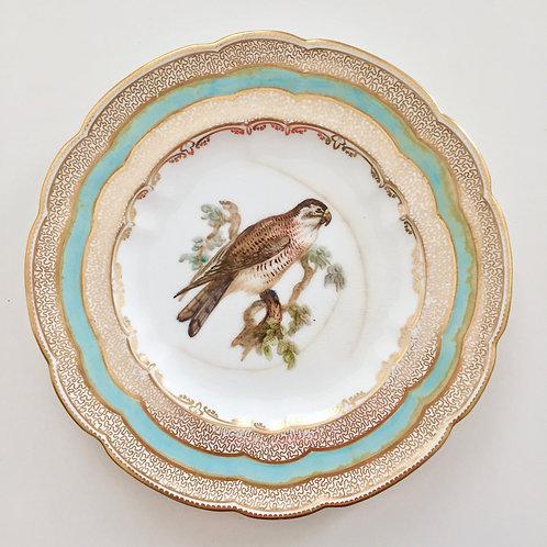 Cabinet plate, bird of prey by John Randall, Coalport 1881 A/F
