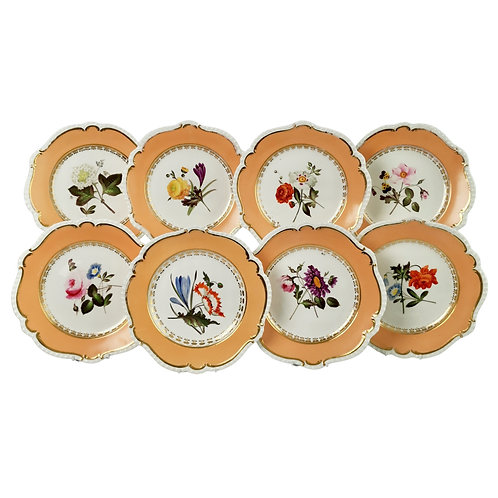 Coalport set of 8 plates, peach, flowers attr. Cecil Jones, 1820-25 (2)