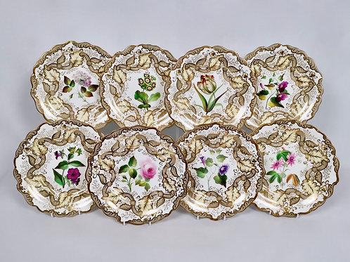 Samuel Alcock set of 8 plates, superb flowers, 1835-1840