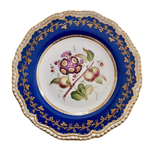 Coalport plate, blue with auriculas and apples, ca 1830