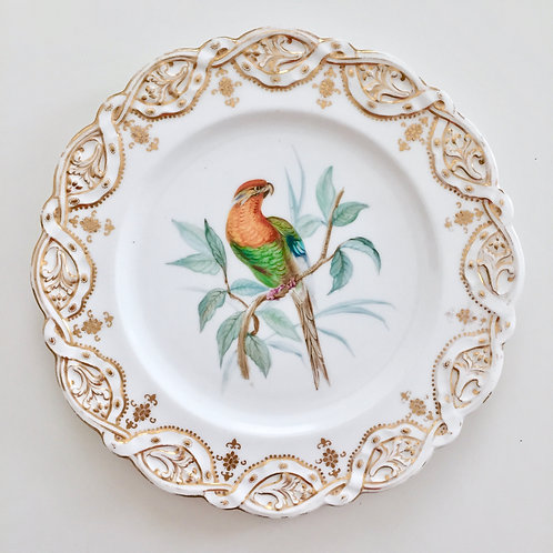Coalport cabinet plate, orange-green parrot by John Randall, 1875-1880