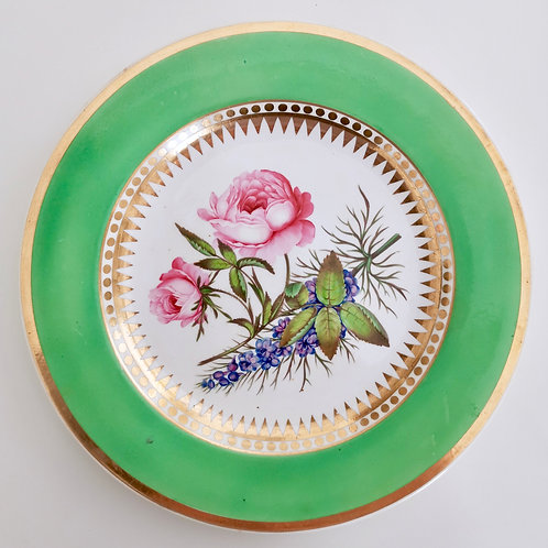 Hicks & Meigh dinner plate with sublime rose, ca 1820