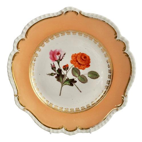 Coalport plate, peach, flowers attr. to Cecil Jones, 1820-25