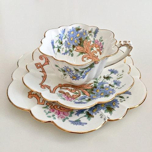 Rare teacup trio, polychrome Daisy Sprays, Wileman 1893