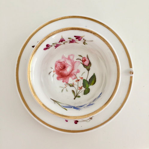 Teacup and saucer, sublime hand painted flowers, Yates 1817-1825