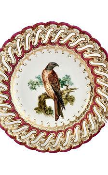 Coalport plate, falcon by John Randall, 1849