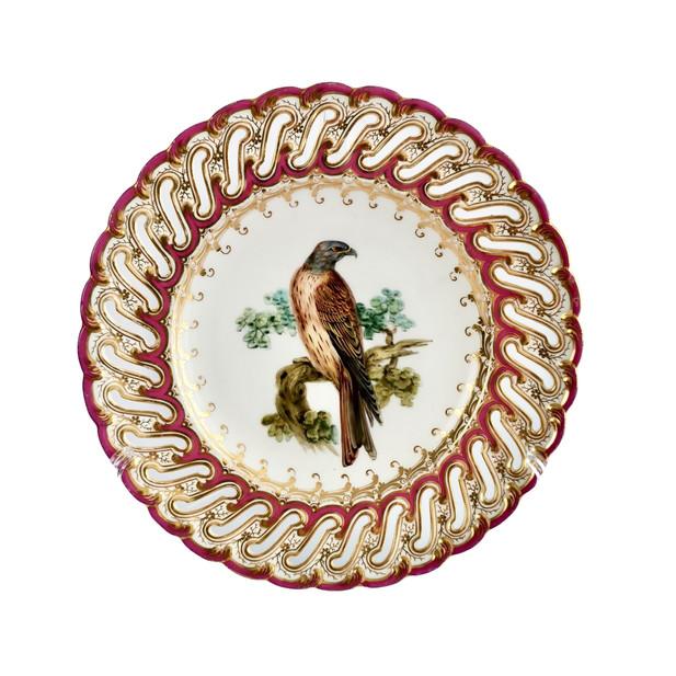 John Randall falcon plate