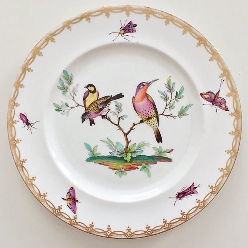 Cabinet plate with birds and insects, Coalport ca 1880