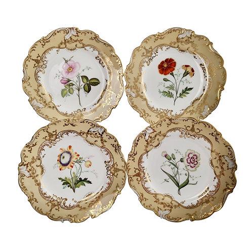 Coalport set of 4 plates, flowers attr. John Toulouse, 1844