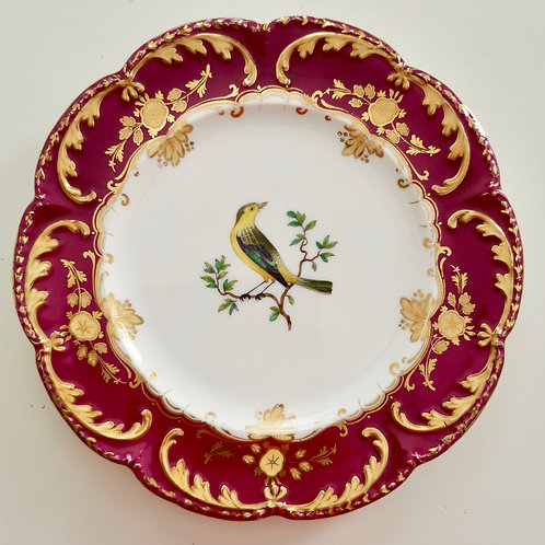 Coalport dessert plate, red rim and oriole bird, ca 1850