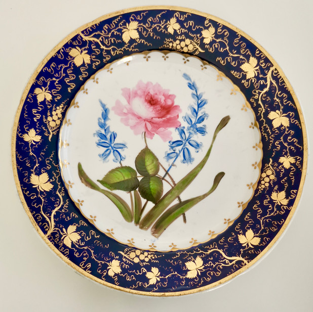 Coalport plate with sublime flower