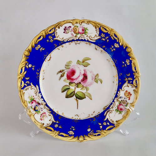 Coalport plate, painted rose patt. 4/412 by Stephen Lawrence, 1840