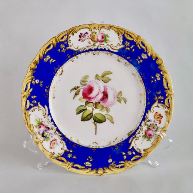 Coalport plate painted by Stephen Lawrance, rose