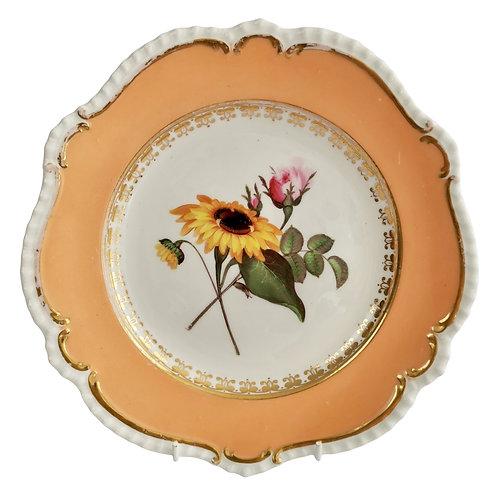Dessert plate Coalport, peach, flowers attr. to Cecil Jones, 1820-25