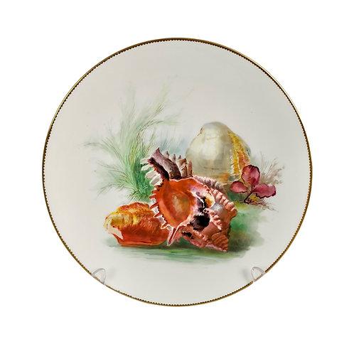 Minton dessert plate, sea shells by W. Mussill, 1891