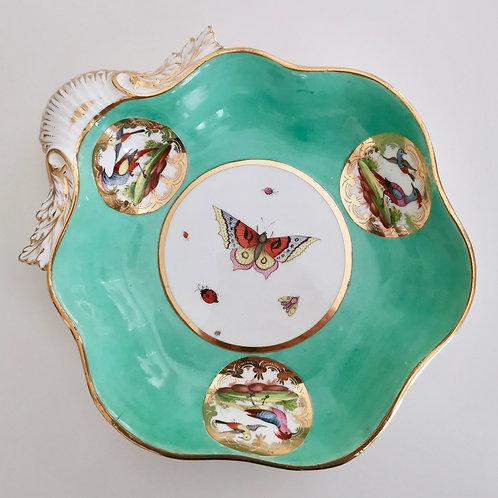 John Rose Coalport shell dish, birds and butterflies, ca 1820