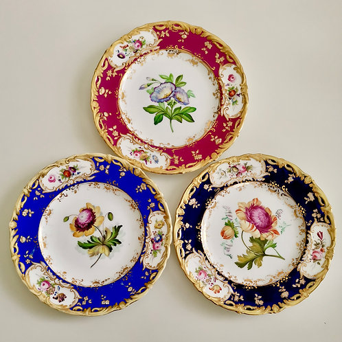Set of 3 Coalport plates, flower studies by Stephen Lawrence, 1840