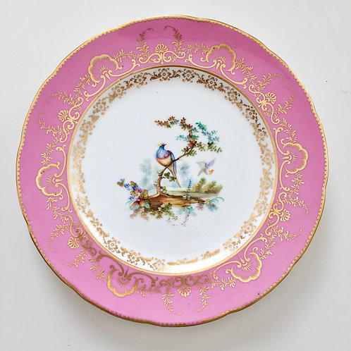 Coalport plate with John Randall bird painting, 1845 (1)