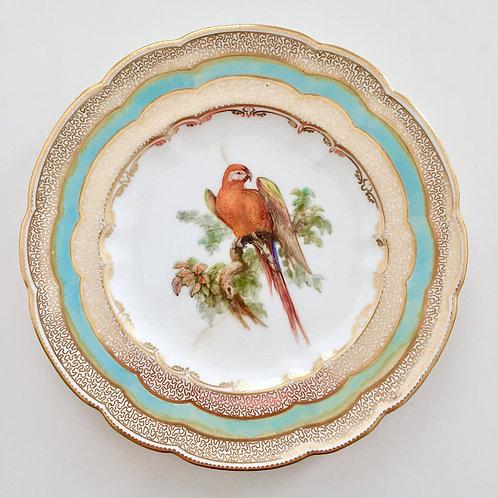 Cabinet plate, orange parrot by John Randall, Coalport 1881 A/F