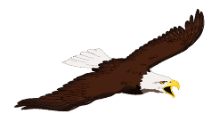 Eagle Flight.png