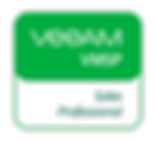 VMSP_,logo_web.png