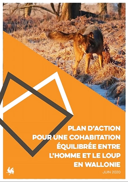 plan%20loup_edited.png