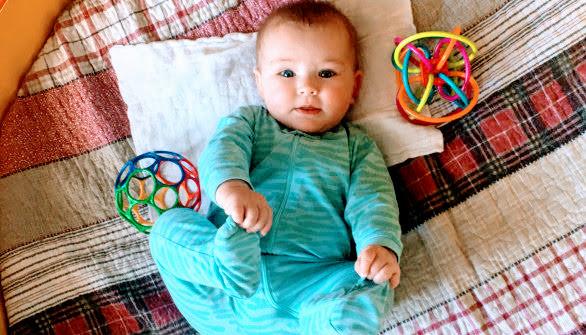 Babies Nest 1.jpg