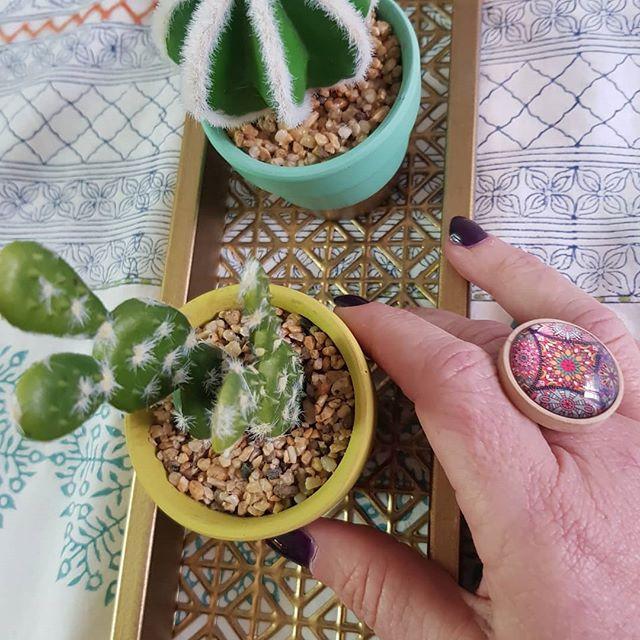 I 💛 socculents 🌵🌵🌵!!! #decoration _#