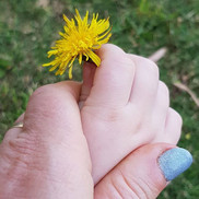 Flowers, flowers everywhere,_In the gard