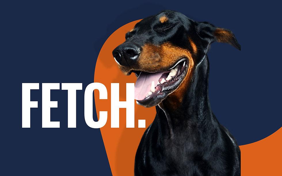 Ocado_Fetch.jpg