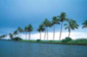 Kerala Sea-side