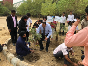 Plantation on World Environment Day
