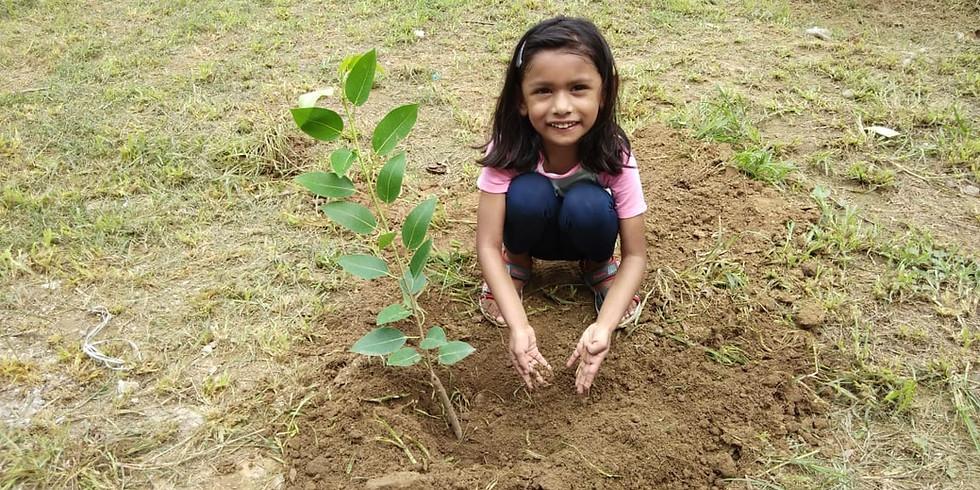 Plantation - World Environment Day