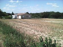 Ginkgobat, va construire une maison sur ce terrain