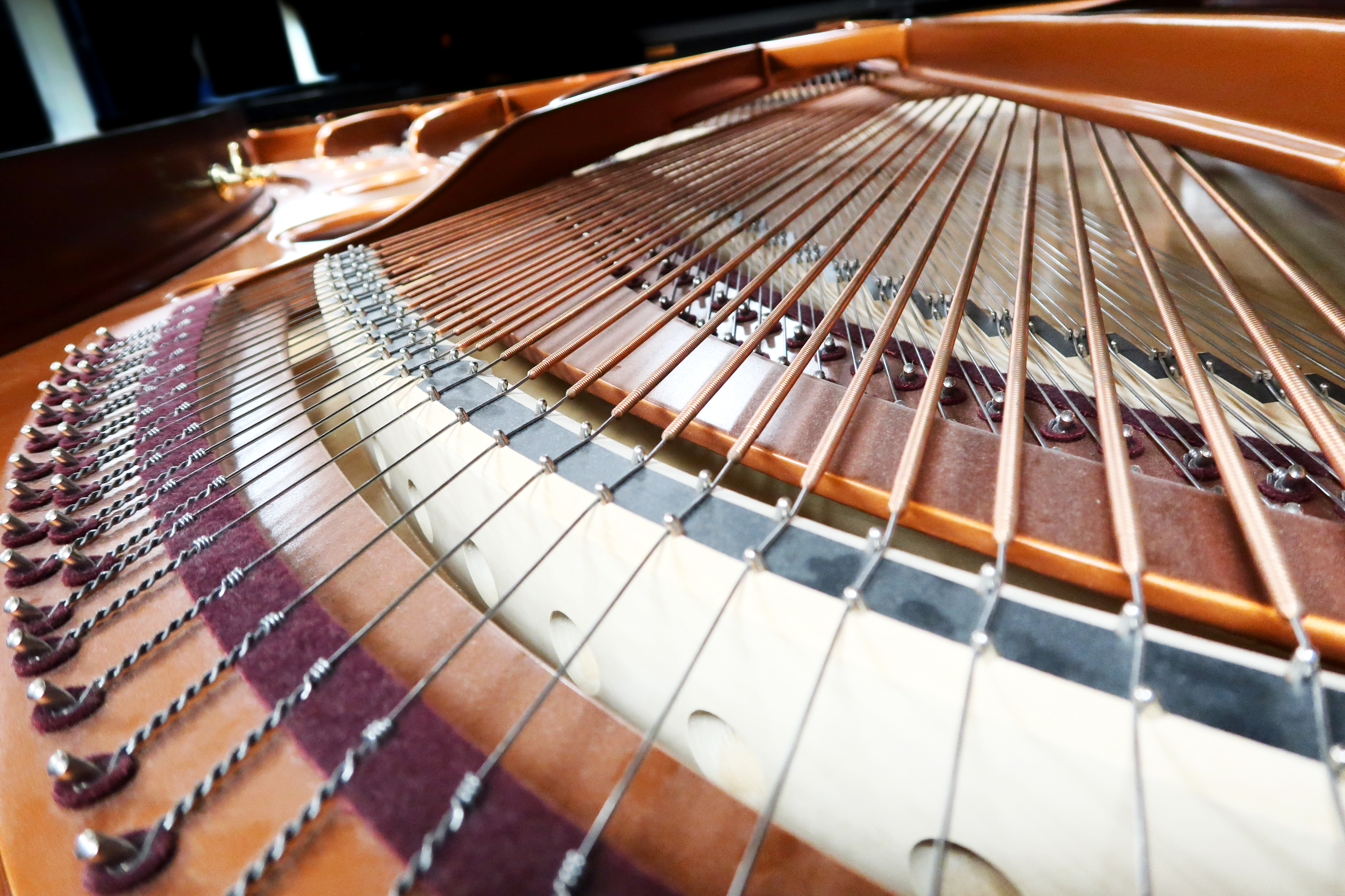 Piano traws Bösendorfer Grand Piano