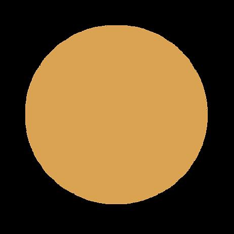 New music orange circle.png