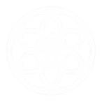 Network icon white SMALL.png