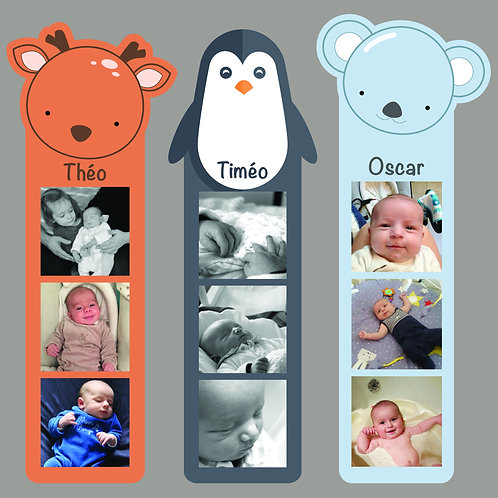 Naissance marque-page animaux
