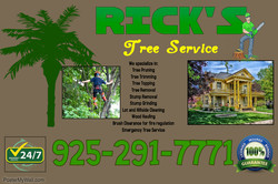 RICKKSTREE-1.jpg