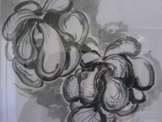 Garden carver organic 006(NTI Shadow 1)