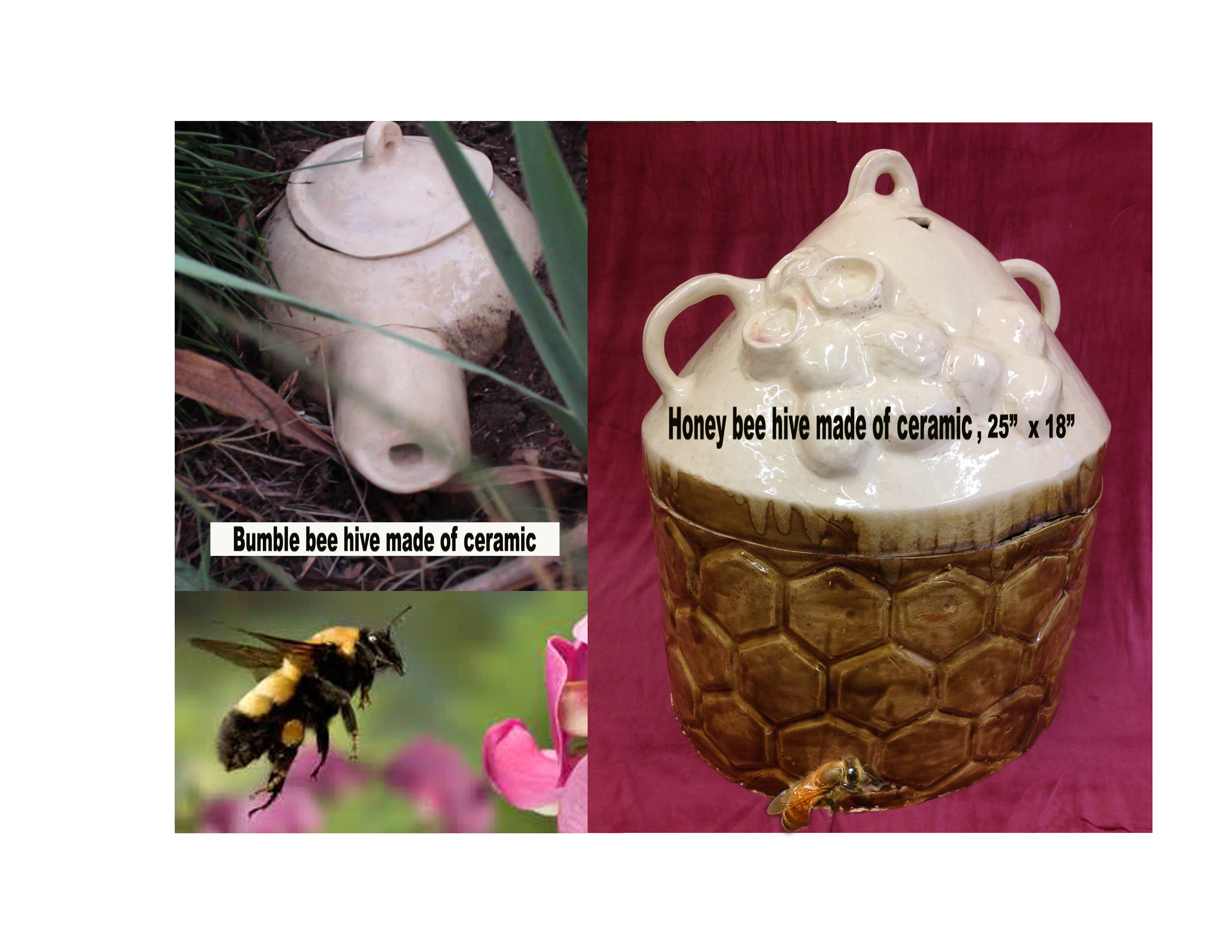 Bee hive-go fund me- promo pic