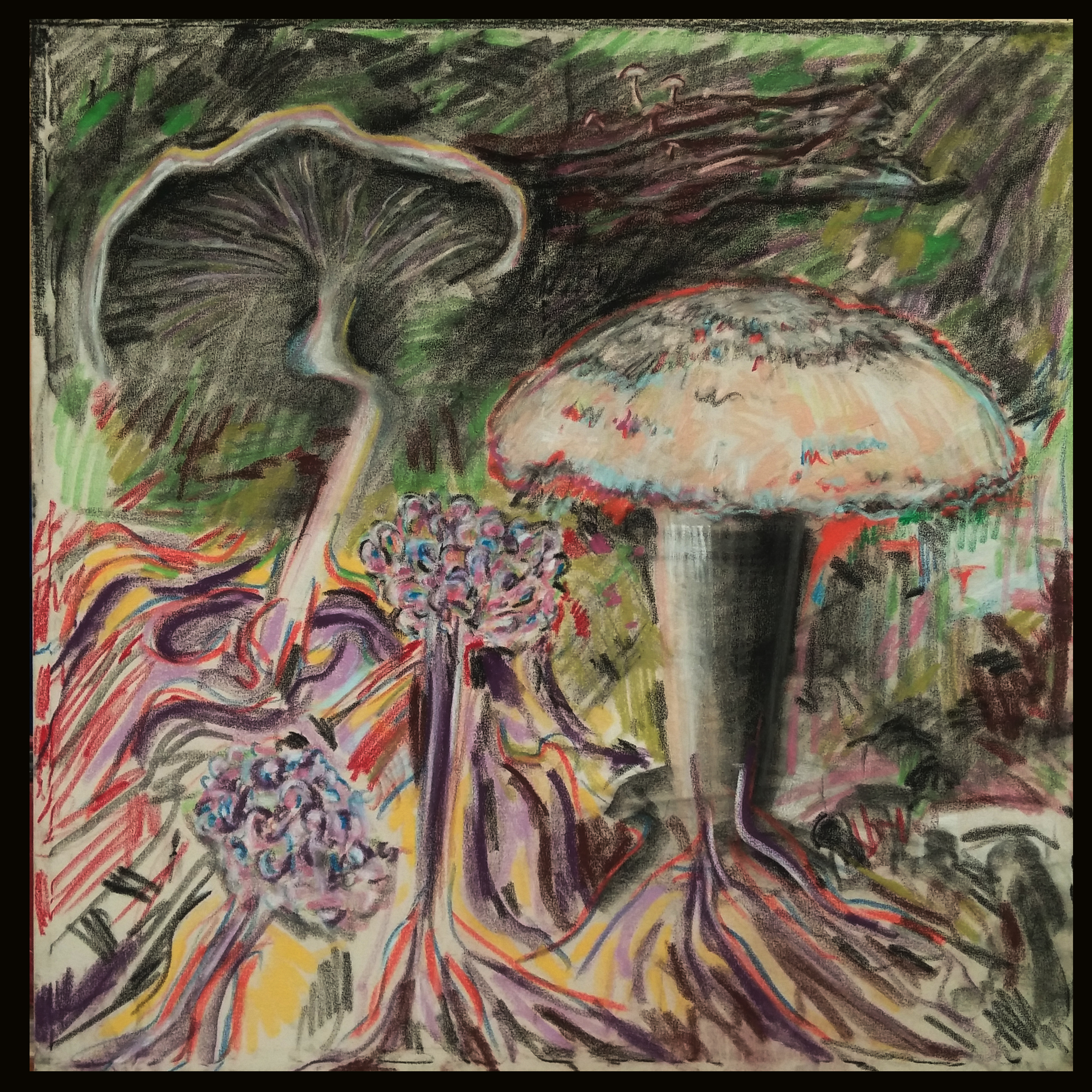 mushroom oil pastel-1-canvas