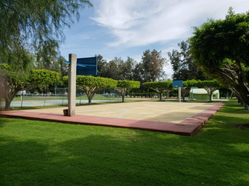Canchas de Basquet ball Chapala