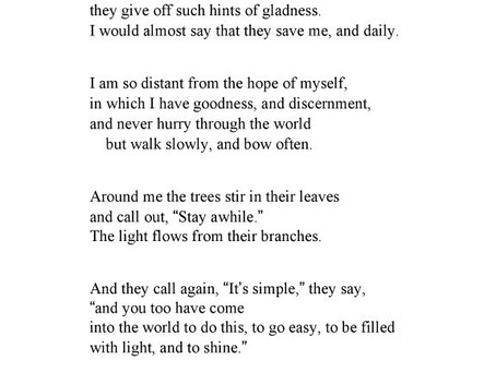 'When I am Among the Trees' by Mary Oliver
