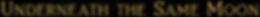 Screen Shot 2020-03-04 at 1.04.02 PM.png