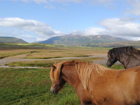 Ásbyrgi - Akureyri